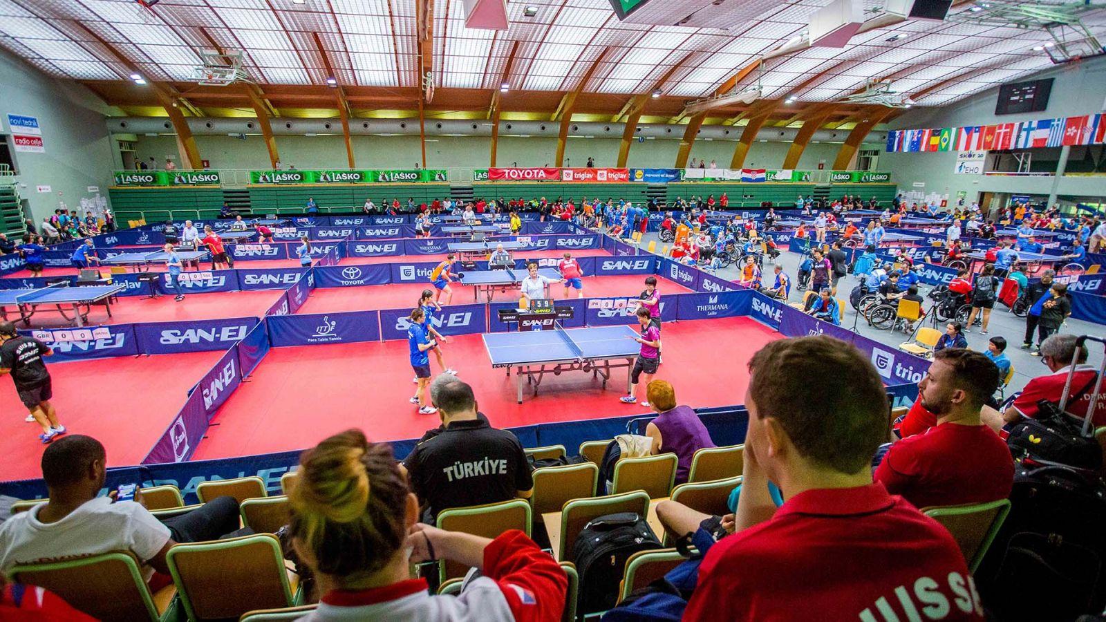 Сборная России по настольному теннису спорта лиц с ПОДА и ЛИН завоевала 4 золотые, 2 серебряные и 6 бронзовых наград на международных соревнованиях в Словении