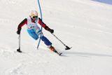 Cборная команда России по горнолыжному спорту  среди лиц с поражением опорно-двигательного аппарата и нарушением зрения заняла 3  место на Чемпионате мира в Испании. В ее активе 11 медалей: 4  золотых,  4  серебряных и  3  бронзовых