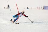 Cборная команда России по горнолыжному спорту среди лиц с поражением опорно-двигательного аппарата  и спорта слепых вылетела в Канаду для участия в этапе Кубка мира