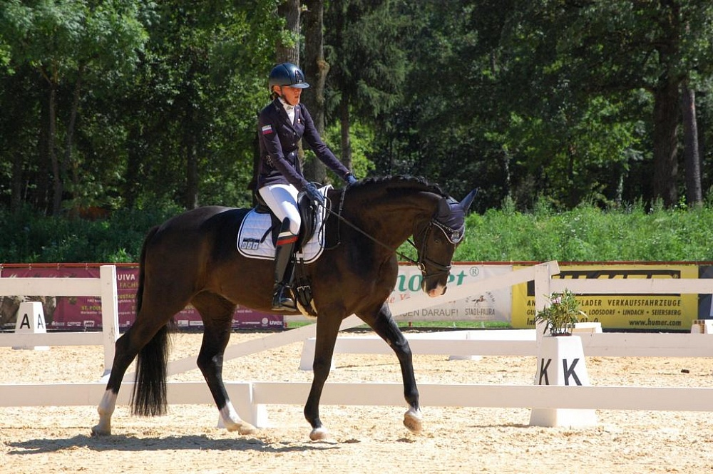 Сборная команда России по конному спорту лиц с ПОДА принимает участие в чемпионате Европы в Нидерландах