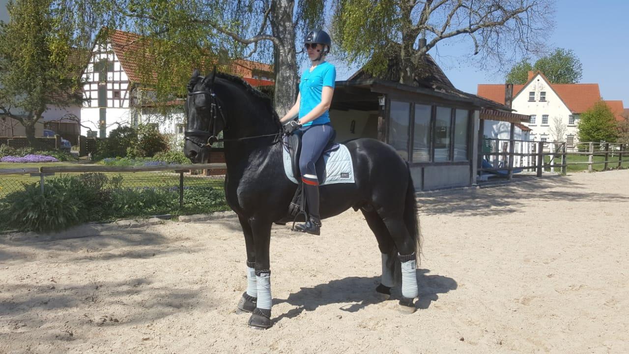 Наталья Мартьянова завоевала 2 золотые медали на международных соревнованиях по конному спорту лиц с ПОДА в Бельгии