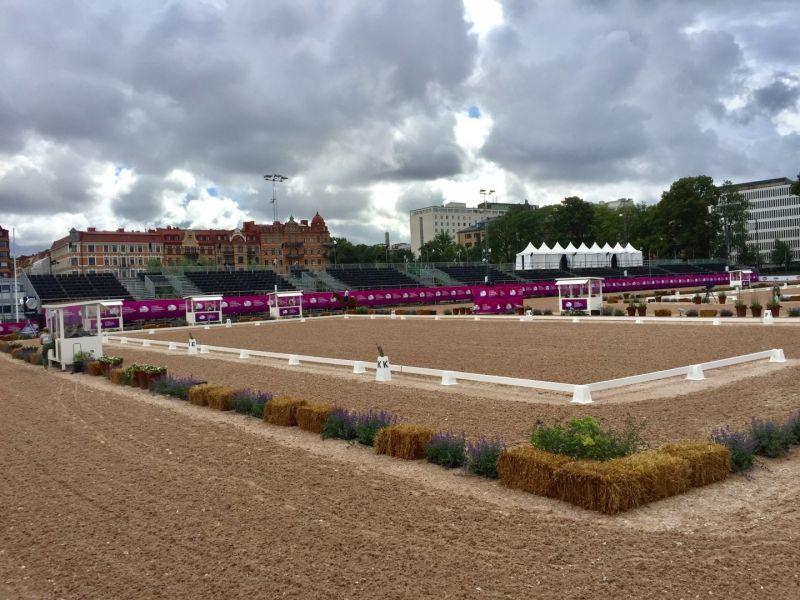 Сборная команда России по конному спорту лиц с ПОДА вступает в борьбу за награды чемпионата Европы в Швеции