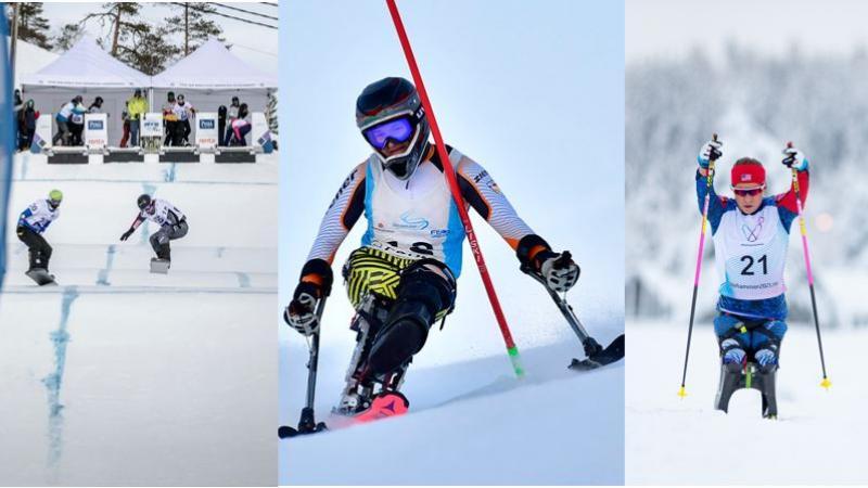 Итоги первой онлайн-встречи стран по Пара Зимним Видам Спорта