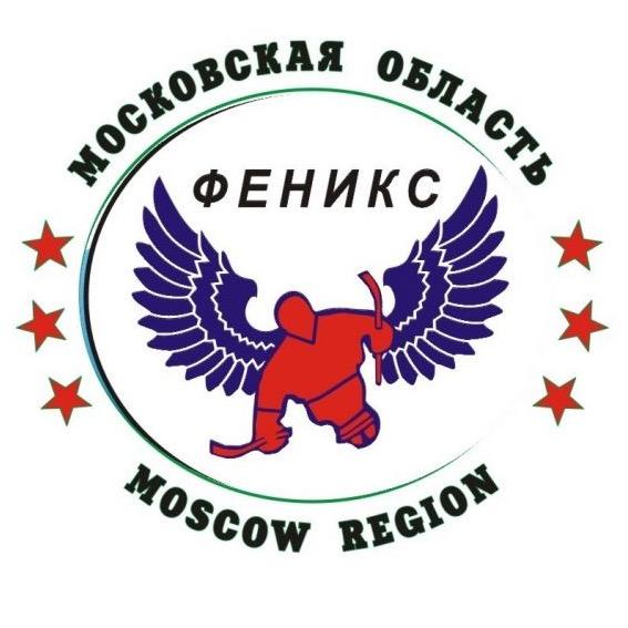 Стал известен состав СХК «Феникс» для участия в международном Кубке континента по следж-хоккею