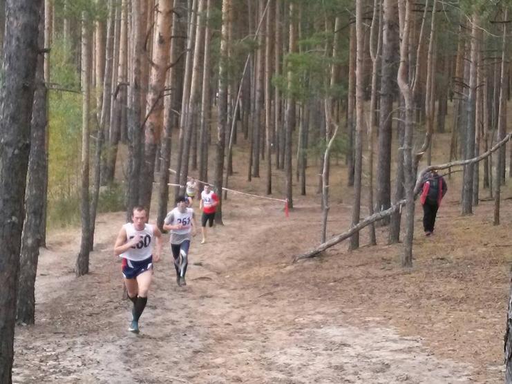 Спортсмены из четырех регионов победили в первом чемпионате России по легкоатлетическому кроссу ЛИН в Нижегородской области