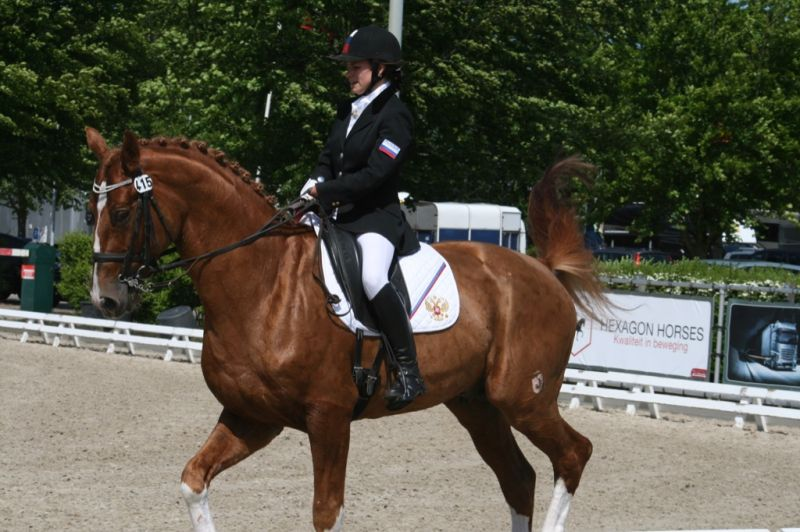 Российские спортсмены приняли участие в международных соревнованиях по конному спорту среди лиц с ПОДА