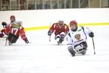 Л. Н. Селезнев, А. А. Строкин  в г. Сочи посетили показательный матч между сборной России по хоккею - следж  и командой Высшей хоккейной лиги – «Кубань» (Краснодар), который прошел на малой Ледовой арене «Шайба»