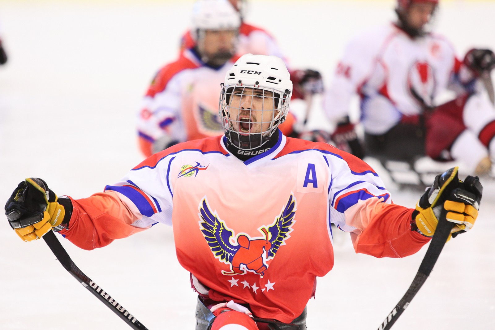 В ДС «Янтарь» в г. Москве завершился первый соревновательный день турнира по хоккею-следж «Кубок Мужества»