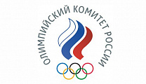 Andrey Strokin took part in the Meeting of the ROC Athletes Commission via video conference