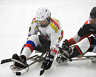 Results of the fourth day of the Open Russian National competitions in the sports included in the program of the Paralympic Winter Games
