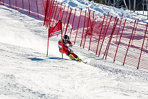 RUSSIAN ATHLETS IN ALPINE SKIING FOR PERSONS WITH PHYSICAL IMPAIRMENTS AND SPORTS OF THE BLIND WON TWO GOLD, THREE SILVER AND SIX BRONZE MEDALS AT THE CUP OF EUROPE IN GERMANY